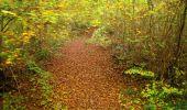 Randonnée Marche LONGPONT - en forêt de Retz_49_Longpont_ étangs de Javage_AR - Photo 43
