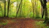Randonnée Marche LONGPONT - en forêt de Retz_49_Longpont_ étangs de Javage_AR - Photo 29