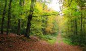 Randonnée Marche LONGPONT - en forêt de Retz_49_Longpont_ étangs de Javage_AR - Photo 128