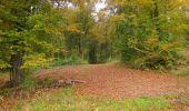 Randonnée Marche LONGPONT - en forêt de Retz_49_Longpont_ étangs de Javage_AR - Photo 87