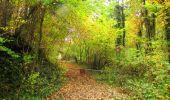 Randonnée Marche LONGPONT - en forêt de Retz_49_Longpont_ étangs de Javage_AR - Photo 119