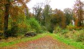 Randonnée Marche LONGPONT - en forêt de Retz_49_Longpont_ étangs de Javage_AR - Photo 65