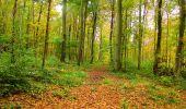 Randonnée Marche LONGPONT - en forêt de Retz_49_Longpont_ étangs de Javage_AR - Photo 37