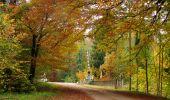 Randonnée Marche LONGPONT - en forêt de Retz_49_Longpont_ étangs de Javage_AR - Photo 51