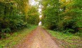 Randonnée Marche LONGPONT - en forêt de Retz_49_Longpont_ étangs de Javage_AR - Photo 68