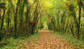 Randonnée Marche LONGPONT - en forêt de Retz_49_Longpont_ étangs de Javage_AR - Photo 117