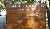 Trail Walk MONTAUROUX - Pont des Tuves 3 - Photo 1