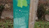 Randonnée Marche SAINT-MARTIN-DU-TERTRE - CRAB : Travailleurs Travailleuses - Photo 8