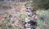 Trail Walk SAINT-MAURICE-SUR-MOSELLE - Sapin le roi soleil et cascade de l'ours  - Photo 3
