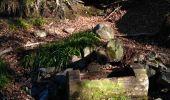 Trail Walk SAINT-MAURICE-SUR-MOSELLE - Sapin le roi soleil et cascade de l'ours  - Photo 1