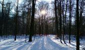Randonnée Raquettes à neige Florenville - Les Epioux - La Roche du Chat - Photo 5