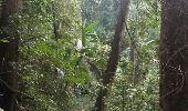 Randonnée Marche Unknown - Doi Oui Peak - Photo 31