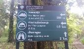 Randonnée Marche Unknown - Doi Oui Peak - Photo 9