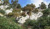 Randonnée Marche TOULON - Faron par le sentier des hirondelles - Photo 1