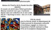 Trail Other activity MELZ-SUR-SEINE - Grand Est - Ligne 4 - Paris Mulhouse (Section de Nogent-sur-Seine à Bar-sur-Aube) - Photo 34
