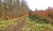 Trail Walk DAMPLEUX - en forêt de Retz_80_sur la Route Tortue et la Route Droite - Photo 119