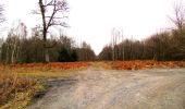 Trail Walk DAMPLEUX - en forêt de Retz_80_sur la Route Tortue et la Route Droite - Photo 46