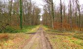 Trail Walk DAMPLEUX - en forêt de Retz_80_sur la Route Tortue et la Route Droite - Photo 117