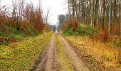 Trail Walk DAMPLEUX - en forêt de Retz_80_sur la Route Tortue et la Route Droite - Photo 120