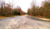 Trail Walk DAMPLEUX - en forêt de Retz_80_sur la Route Tortue et la Route Droite - Photo 44