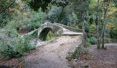 Trail Walk MONTAUROUX - Montauroux-Pont des Tuves 2 - Photo 1