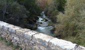 Trail Walk MONTAUROUX - Montauroux-Pont des Tuves 2 - Photo 3