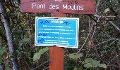 Trail Walk MONTAUROUX - Montauroux-Pont des Tuves 2 - Photo 4