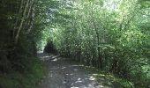 Trail Walk SAINT-LARY-SOULAN - 2011-08-03 15h51m06 - Photo 5