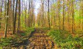 Trail Walk DAMPLEUX - en forêt de Retz_80_sur la Route Tortue et la Route Droite - Photo 173
