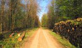 Trail Walk DAMPLEUX - en forêt de Retz_80_sur la Route Tortue et la Route Droite - Photo 174