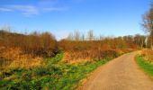 Trail Walk DAMPLEUX - en forêt de Retz_80_sur la Route Tortue et la Route Droite - Photo 150