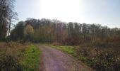 Trail Walk DAMPLEUX - en forêt de Retz_80_sur la Route Tortue et la Route Droite - Photo 148