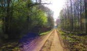 Trail Walk DAMPLEUX - en forêt de Retz_80_sur la Route Tortue et la Route Droite - Photo 171