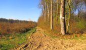 Trail Walk DAMPLEUX - en forêt de Retz_80_sur la Route Tortue et la Route Droite - Photo 162