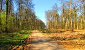 Trail Walk DAMPLEUX - en forêt de Retz_80_sur la Route Tortue et la Route Droite - Photo 134