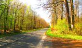Trail Walk DAMPLEUX - en forêt de Retz_80_sur la Route Tortue et la Route Droite - Photo 224