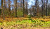 Trail Walk DAMPLEUX - en forêt de Retz_80_sur la Route Tortue et la Route Droite - Photo 161