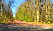 Trail Walk DAMPLEUX - en forêt de Retz_80_sur la Route Tortue et la Route Droite - Photo 223