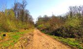 Trail Walk DAMPLEUX - en forêt de Retz_80_sur la Route Tortue et la Route Droite - Photo 133