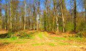 Trail Walk DAMPLEUX - en forêt de Retz_80_sur la Route Tortue et la Route Droite - Photo 135
