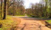 Trail Walk DAMPLEUX - en forêt de Retz_80_sur la Route Tortue et la Route Droite - Photo 226