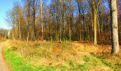 Trail Walk DAMPLEUX - en forêt de Retz_80_sur la Route Tortue et la Route Droite - Photo 151