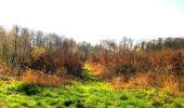 Trail Walk DAMPLEUX - en forêt de Retz_80_sur la Route Tortue et la Route Droite - Photo 149