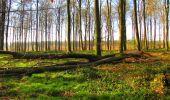Trail Walk DAMPLEUX - en forêt de Retz_80_sur la Route Tortue et la Route Droite - Photo 153