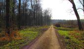 Trail Walk DAMPLEUX - en forêt de Retz_80_sur la Route Tortue et la Route Droite - Photo 160