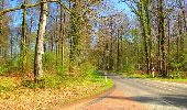 Trail Walk DAMPLEUX - en forêt de Retz_80_sur la Route Tortue et la Route Droite - Photo 225