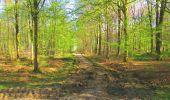 Trail Walk DAMPLEUX - en forêt de Retz_80_sur la Route Tortue et la Route Droite - Photo 172