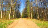 Trail Walk DAMPLEUX - en forêt de Retz_80_sur la Route Tortue et la Route Droite - Photo 163