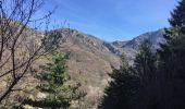 Randonnée A pied ROCLES - 07 Mont AIGU  04-04-17 - Photo 3