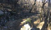 Randonnée A pied ROCLES - 07 Mont AIGU  04-04-17 - Photo 11